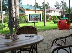 backyard TV